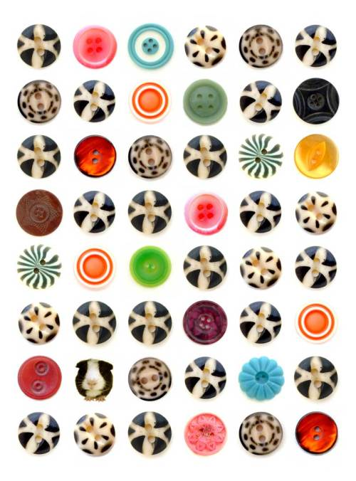 LIQUORICE Buttons, Kate Kessling Edition 12 2008